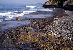 A beach in the winter - just north of Scripps pier.